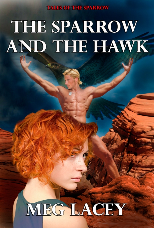 the-sparrow-and-the-hawk-final-hi-rez